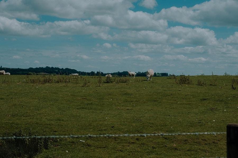 Park-Farm-Daventry-Wedding-Photos-northamptonshire 0136