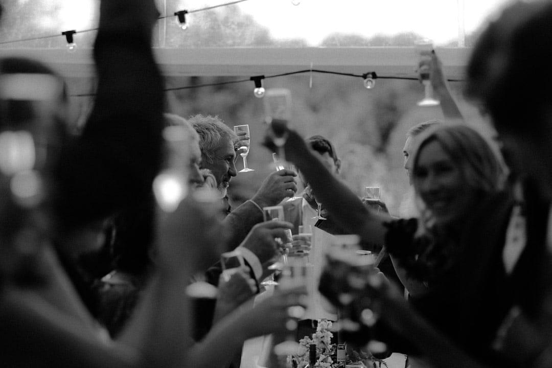 wedding-speeches-guests-raising-glasses-diy-wedding