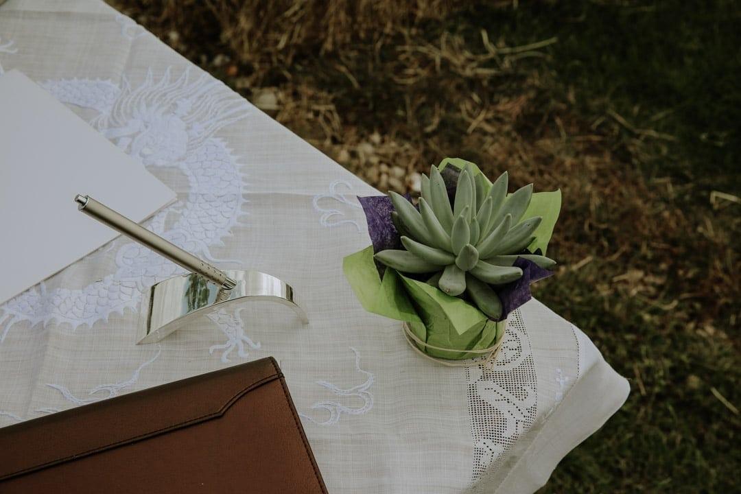 succulent-wedding-decorations-outdoors-wedding