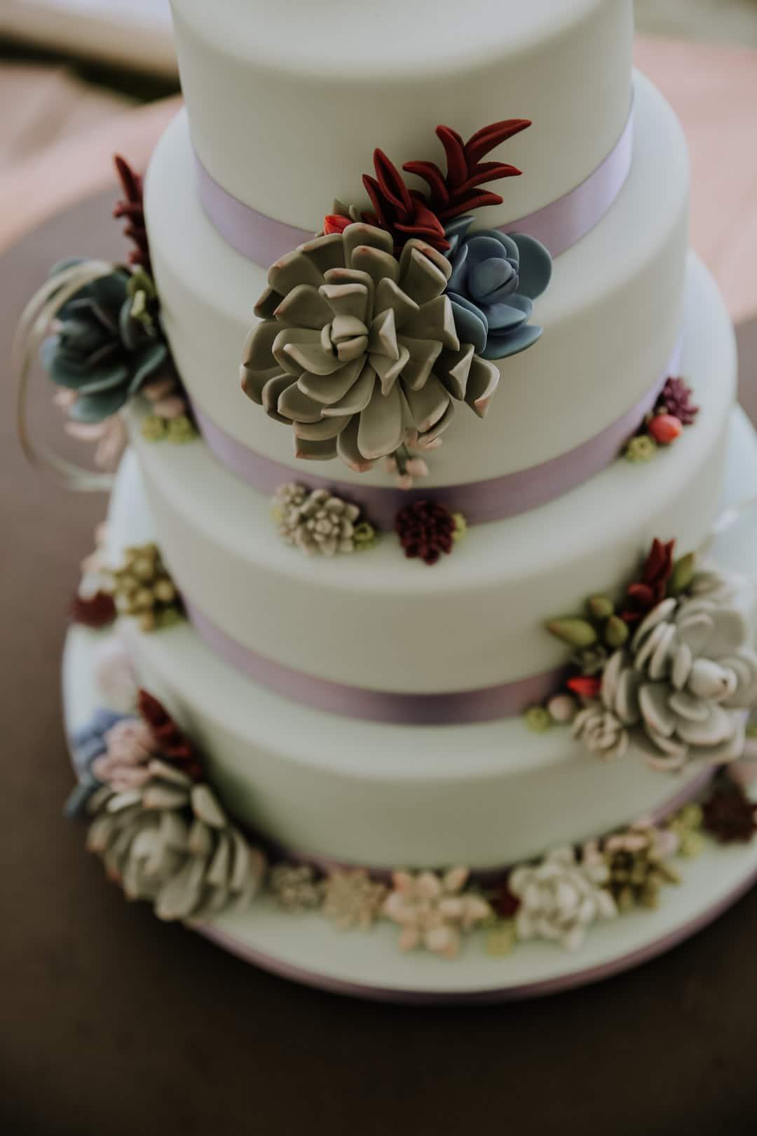 succulent-cake-decoration-wedding-cake-leicestershire-diy-wedding-christine-mcnally